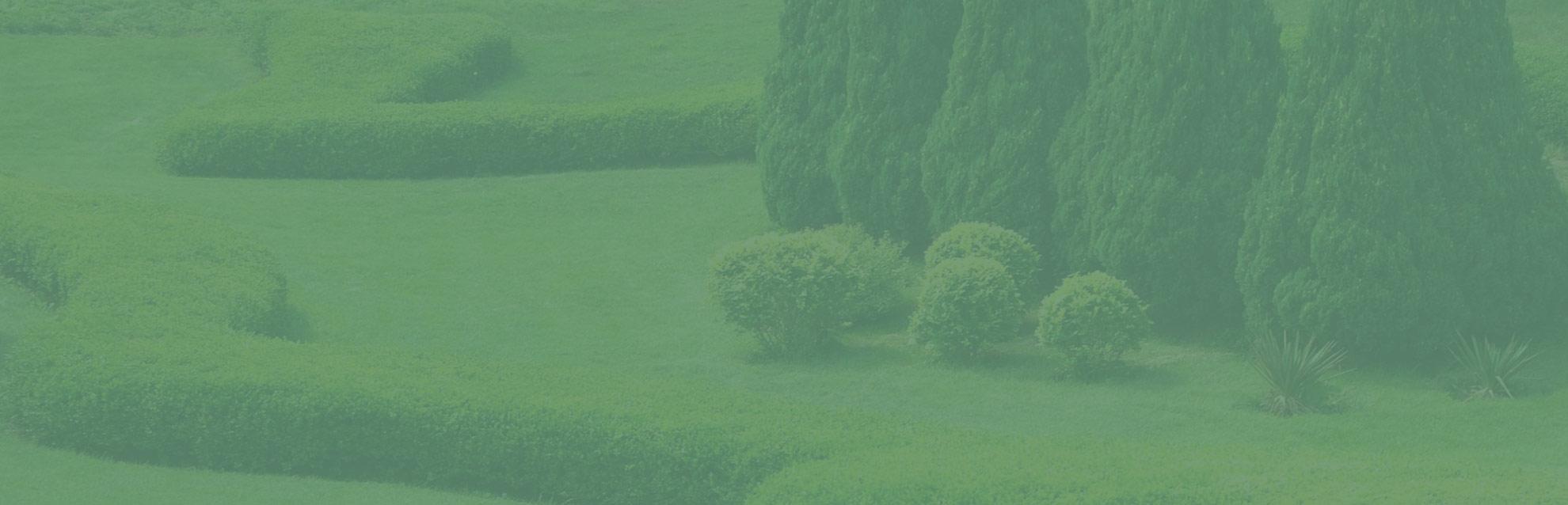 Paysagiste Indre Et Loire accueil   cap vert paysage